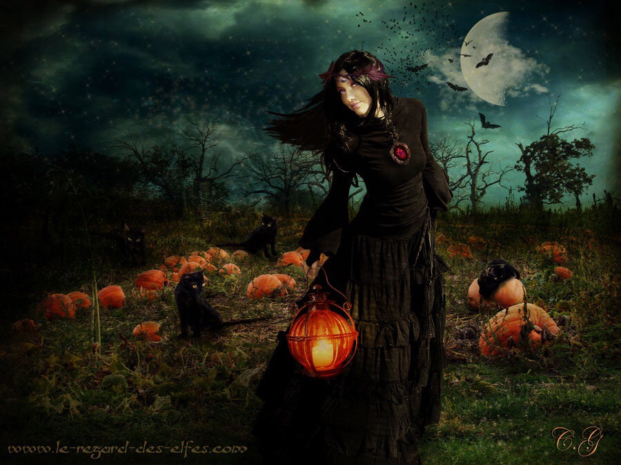 The Witches Wheel Samhain Halloween October 31st Samhain Summers End is one of our four Greater Sabbats the highest holy day of witches It is a cross