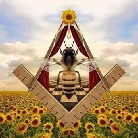 Do You Bee Lieve 2 Bee Or Not 2 Bee Twiggietruth