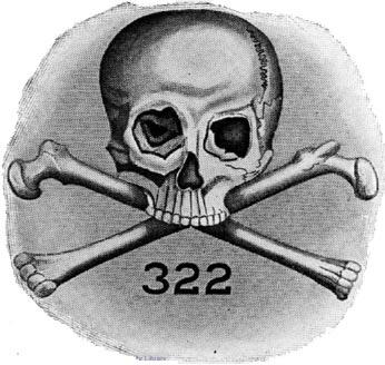 Skull & bones symbol 322
